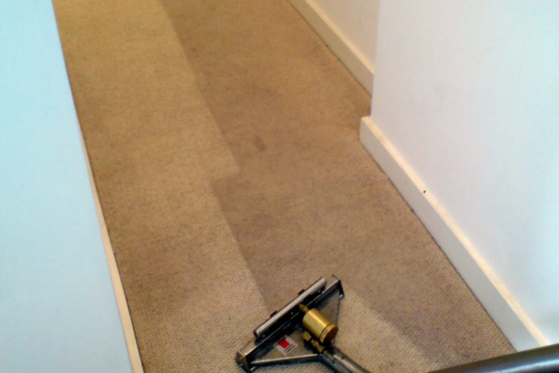 Dry or Wet Carpet Cleaning? Which is Better?