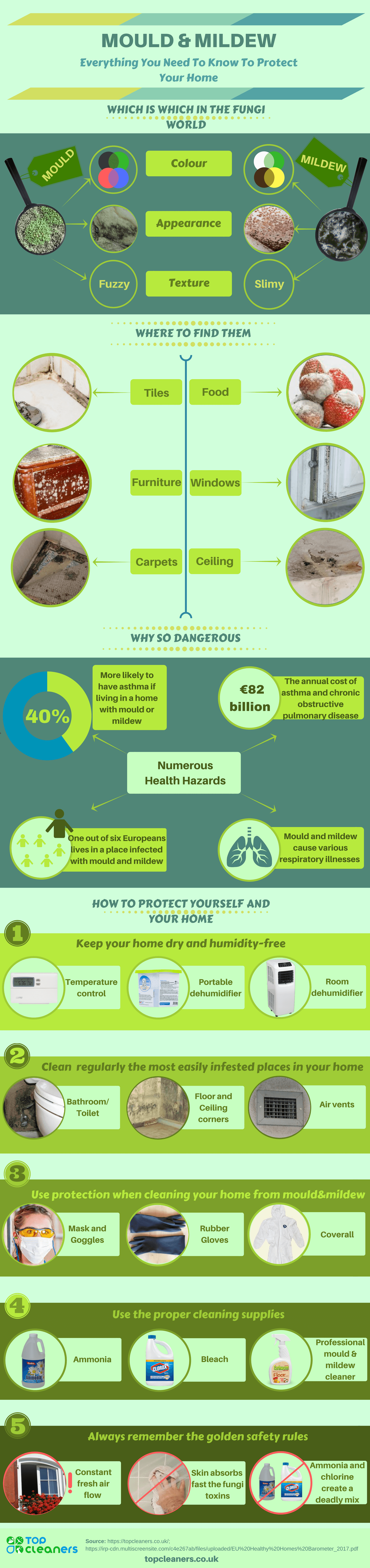 Infographic Mould&Mildew