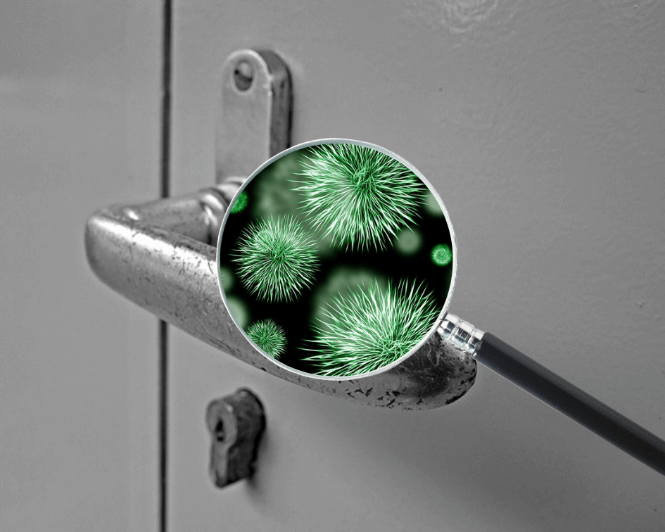 Bacteria on a door knob in a London home