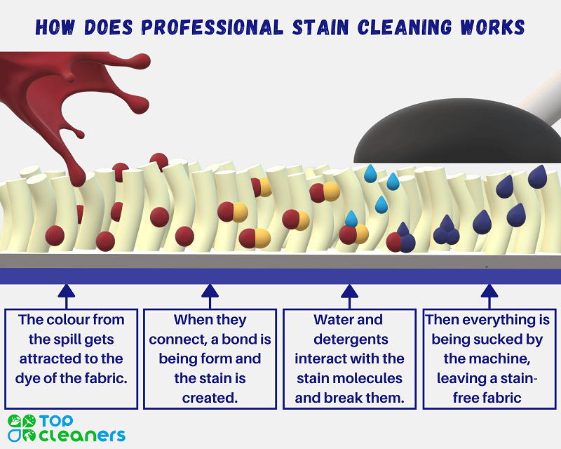 how does professional stain cleaning works