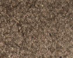 Frisee carpet